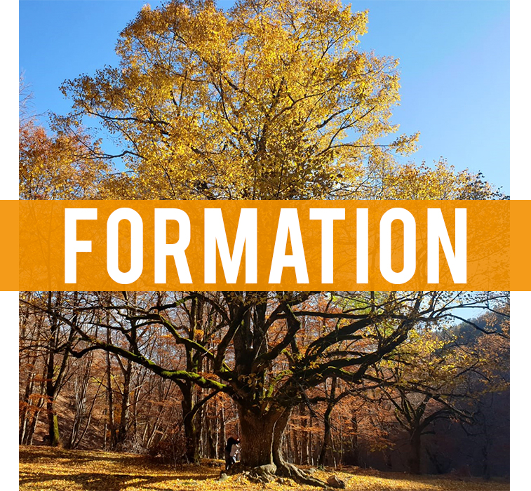 formation - Espace et solutions, coaching, formation, conseil