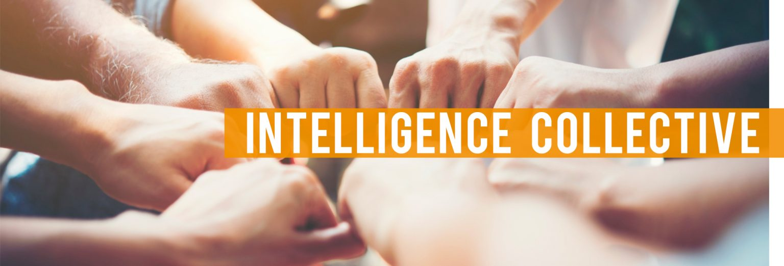 intelligence collective - Espace et solutions, coaching, formation, conseil