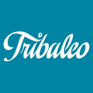 tribaleo - Espace et solutions Coaching, formation et conseil